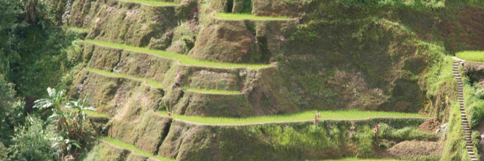 Risterrasserne i Banaue